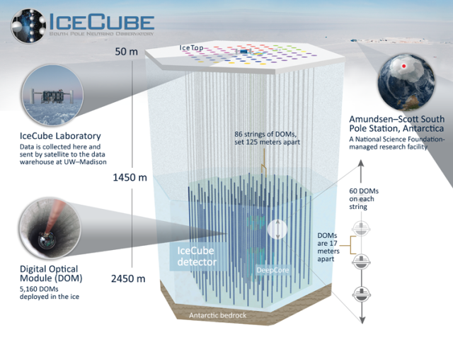 icecube_detector_sm