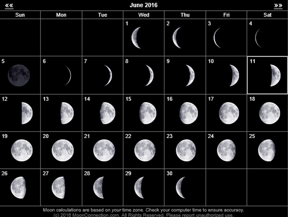June Calendar With Moon Phases : Curious about lunar calendars renaissance universal